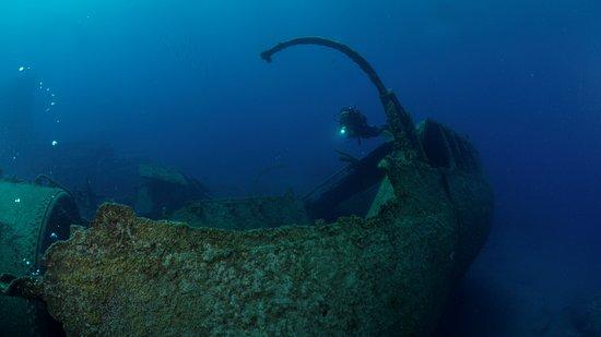 Atlantic Divers: El Condesito.  A great dive...
