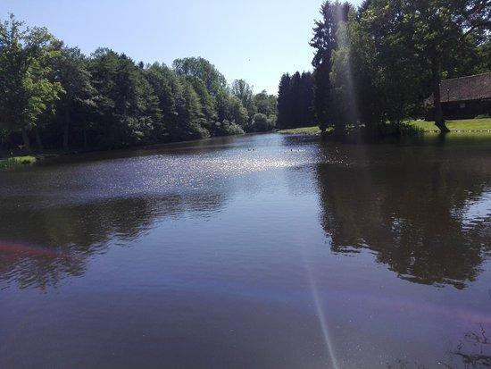 Selsingen ภาพถ่าย