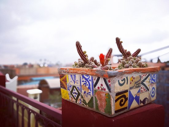 Riad La Terrasse des Oliviers: Dettagli in perfetto stile marocchino
