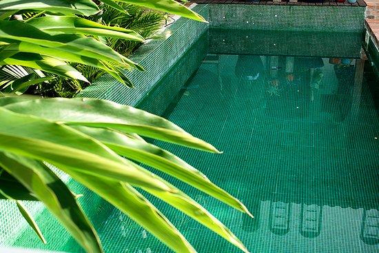 Boutique Hotel Carpe Diem: detalhe piscina