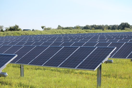 Agricenter International RV Park: We have a 5 acre solar farm on site that generates electricity for Memphis!
