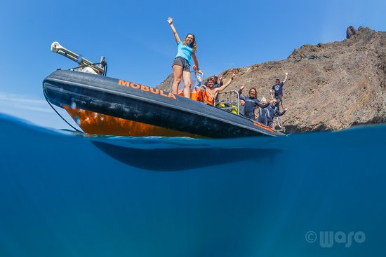 Mindelo, Tanjung Verde: Haliotis CV