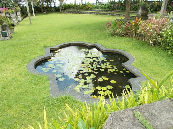 Tirta Gangga: The small pool beside the steps from the back side to the main area of the grounds