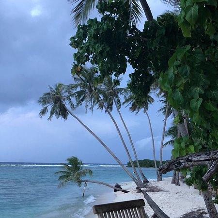 Samura Maldives Guest House 사진