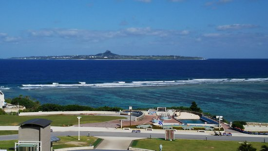 Okinawa Churaumi Aquarium: DSC_0527_large.jpg