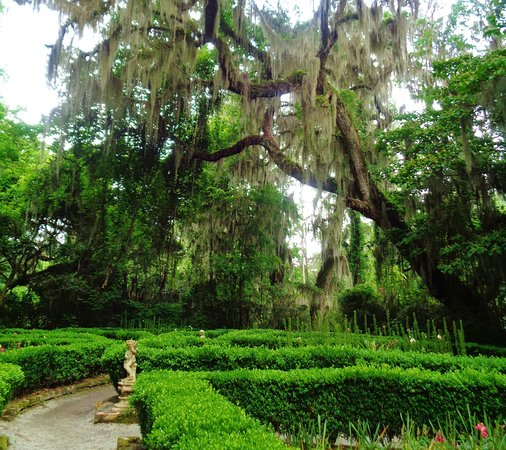 Magnolia Plantation & Gardens: Magnolia Plantation Gardens