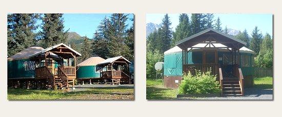 Sourdough Sue's Yurts: (2) 24 Ft. Yurt's/Sleeps (6) w/ private bath /kitchenette