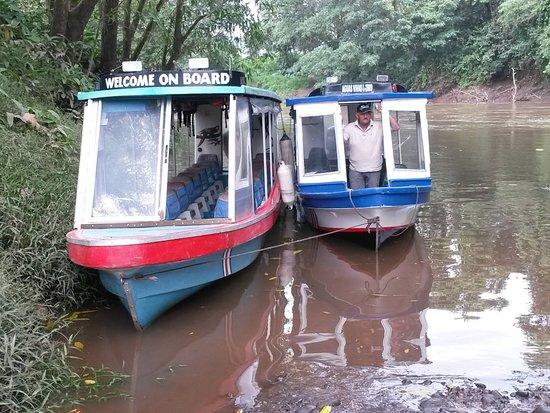 Puerto Viejo de Sarapiqui, Kostaryka: Dos de nuestros botes. Two of our boats