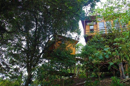 San Francisco, كولومبيا: Proyecto sostenible y amigable con el medio ambiente
