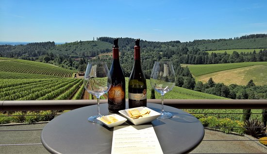 Dundee, OR: Enjoy the view while tasting the wines.