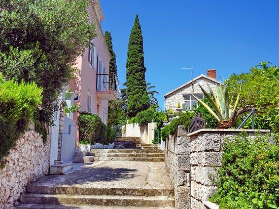 Korcula Island, Croacia: Altstadt Korčula