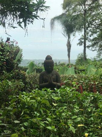 Oxygen Jungle Villas Image