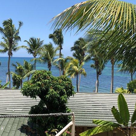 Anse Bois de Rose, Seychelles: photo7.jpg