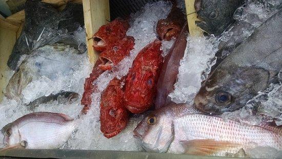 Restaurante Sodemar: Pescado fresco de la LLotja