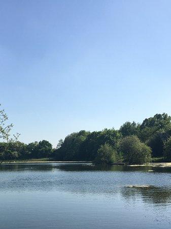 Longton, UK: Lake 3 mins away