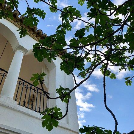 Cortijo El Guarda: photo0.jpg
