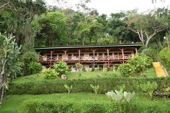 Tabulia Tree Hotel & Villas: DSC_4581_large.jpg