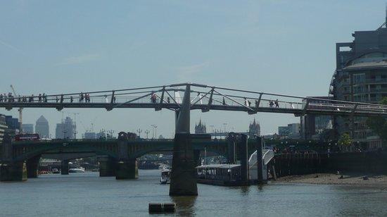 Westminster to Tower of London Hop-On-Hop-Off Cruise: Enchaînement de 4 ponts depuis le Millenum jusqu'au Tower Bridge