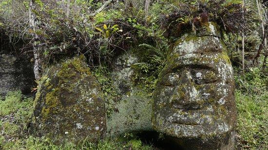Floreana, الإكوادور: La cara de un humano tallada plr uno de los primeros habitante de la isla