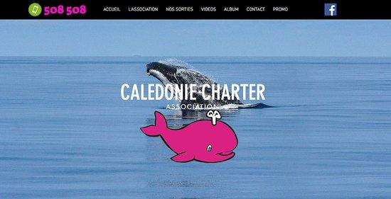 Noumea, New Caledonia: Site Calédonie Charter