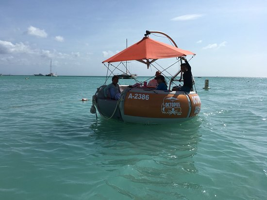 Octopus Sailing Charters: Octopus Aruba Aqua Donut Private Boat Rent Your Own Boat Fun Sun Friends Family Caribbean Sea Bl