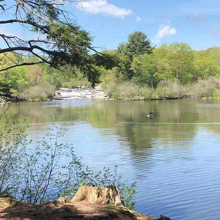 Royal River Park