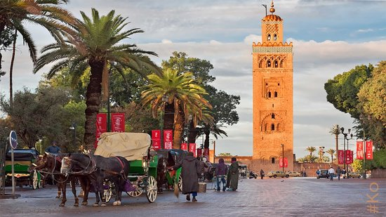 Visiting Marrakech Tours