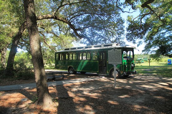 Wadmalaw Island, Carolina del Sur: Trolley Tour well worth the time especially for Tea lovers.