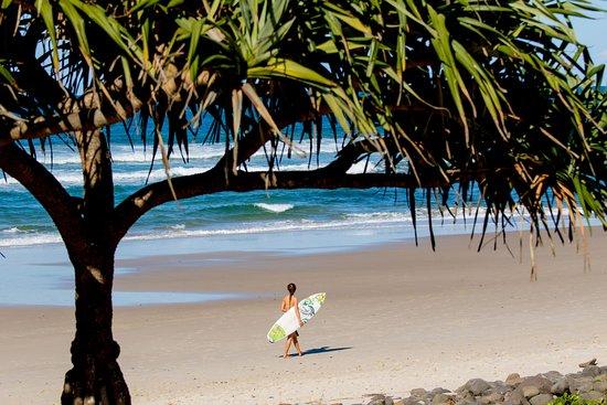 big4 ballina headlands holiday park au 46 2019 prices reviews rh tripadvisor com au