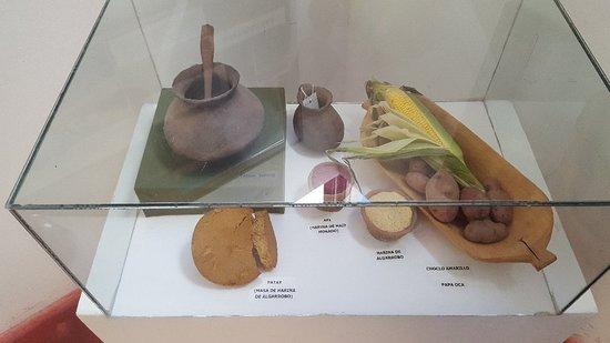 Museo de Antropologia de Salta: Muy lindo Bastante organizado y limpio, no cobran entrada, una visita de no mas de 20min y los l
