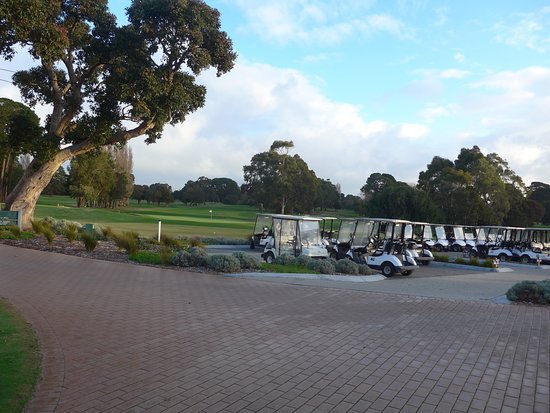 Golf Carts lined up at Rosebud Country Club.
