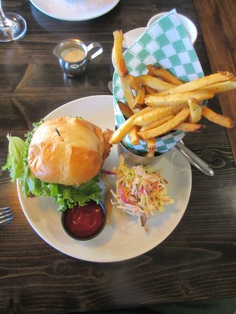 Lake City, CO: Summit Sandwich with fries and coleslaw