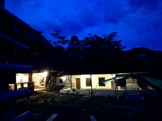 Rainforest Awareness Rescue Education Center: RAREC at night