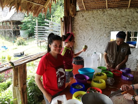 Rainforest Awareness Rescue Education Center: Volunteers, tourists and staff preparing food for animals