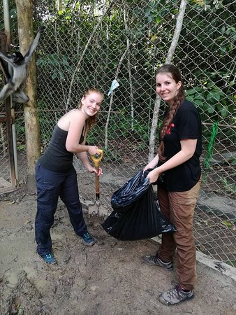 Rainforest Awareness Rescue Education Center: Volunteers cleaning cages
