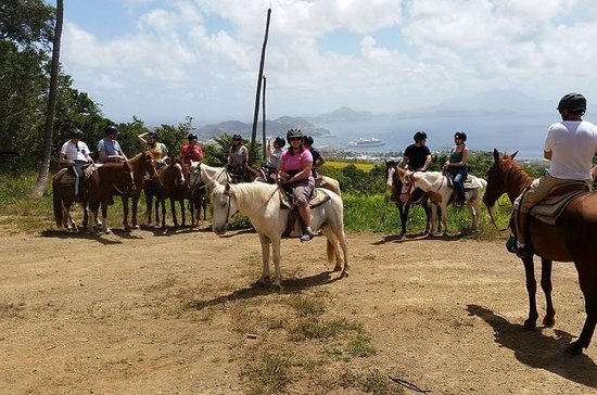 St Kitts Rainforest Horseback Riding...