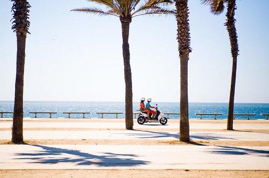 Excursión independiente en scooter de...