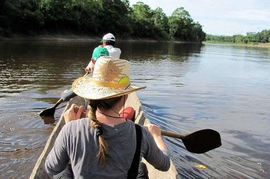 3-Day Wildlife Tour i Amazonas fra...