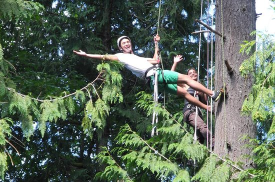 Canopy Tree Climbing at Deception ...