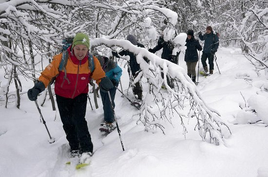 Guided Snowshoe Walk on Tromsoya...