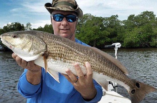 Carta de pesca costera de la isla de...