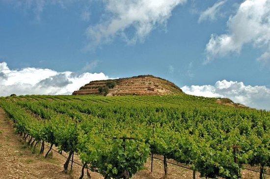 Tour dei vini e dell'olio d'oliva di