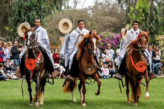 Full-Day Private Tour of Pachacamac Site and Peruvian Paso Horse Show...