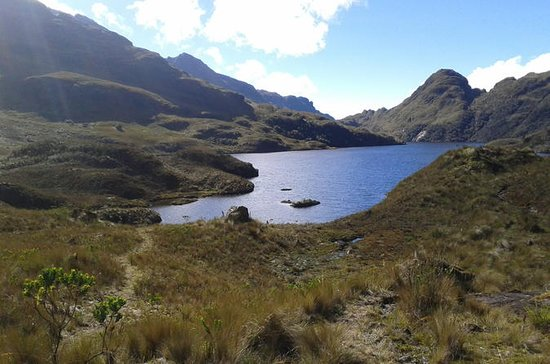 Full-Day Tour of Cajas National Park...