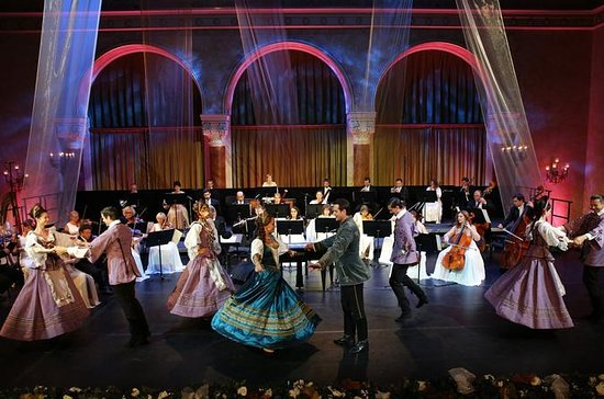 Gala Concert at Danube Palace or Pesti Vigado with Exclusive Guided...
