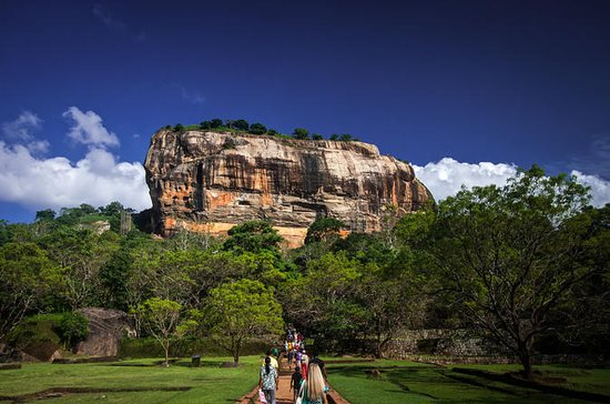 Sigiriya Rock and Dambulla Cave...