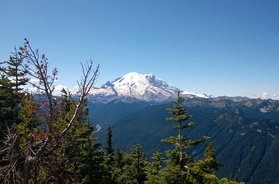 Tour en hidroaviones Mt Rainier...
