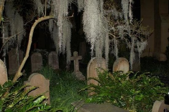 Charleston Haunted History Horse and Carriage Tour with Old South...