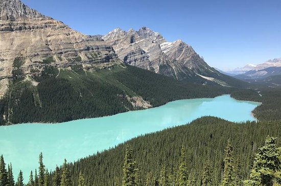 Lake Louise and Icefield Parkway...