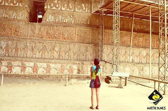 Excursión arqueológica de medio día...